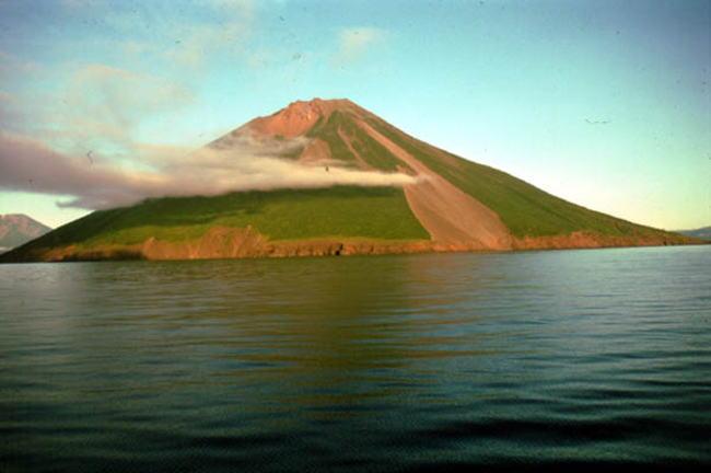 スルツェイ島の画像 p1_24